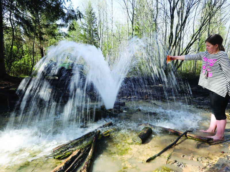Лесные фонтаны у реки Парицы